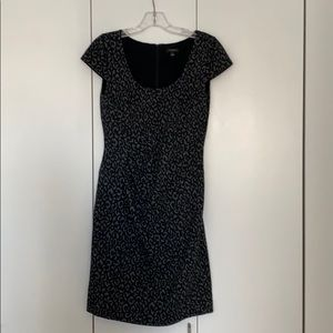 Leopard Dress Work Ann Taylor